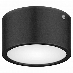 Lightstar Zolla Cyl LED-RD 380173